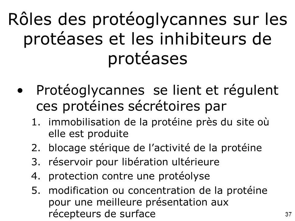 Mardi 12 février 2008 Rôles des protéoglycannes sur les protéases et les inhibiteurs de protéases.