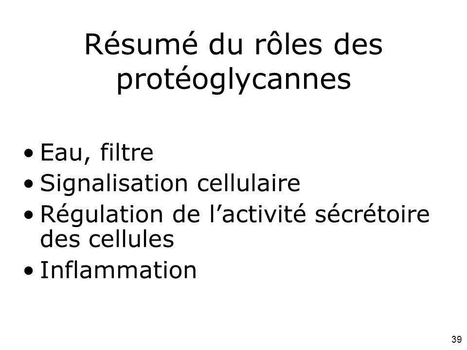 Résumé du rôles des protéoglycannes
