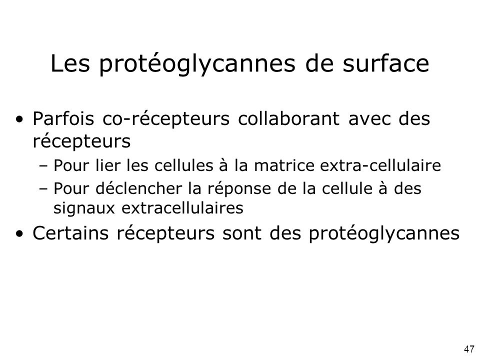 Les protéoglycannes de surface