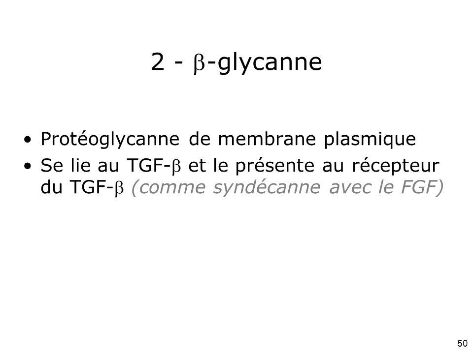 2 - -glycanne Protéoglycanne de membrane plasmique