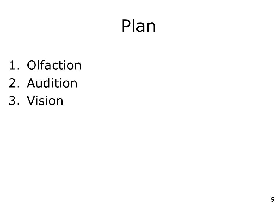 Plan Olfaction Audition Vision p1268