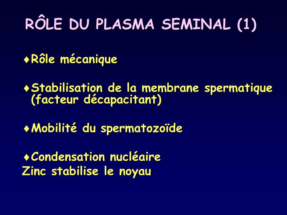 RÔLE DU PLASMA SEMINAL (1)