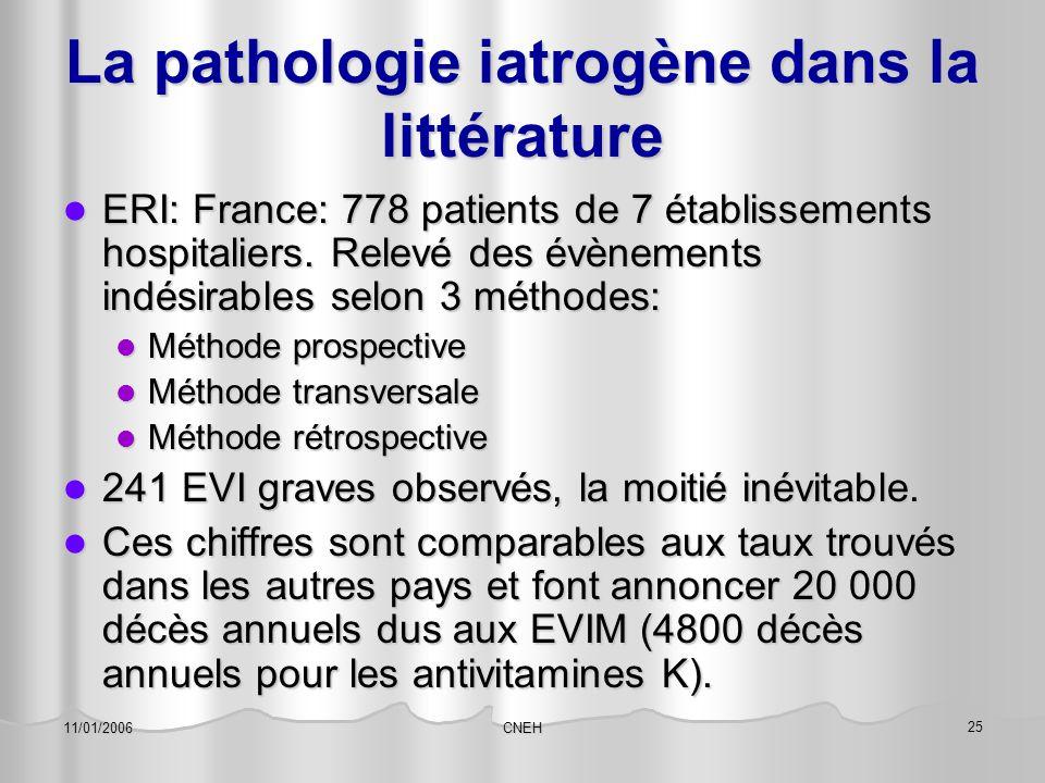 La pathologie iatrogène dans la littérature