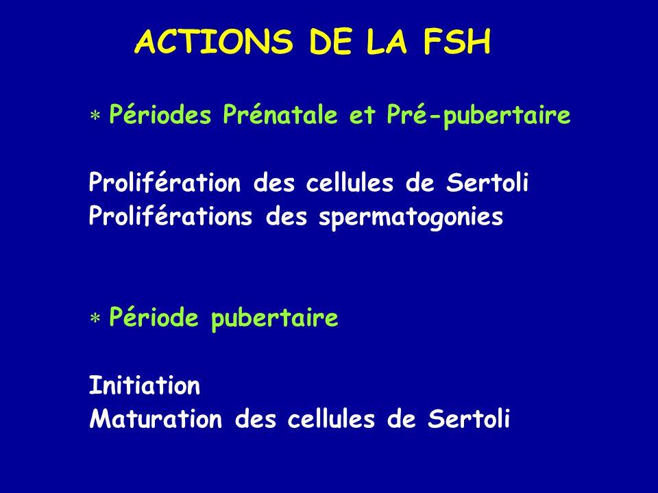 ACTIONS DE LA FSH Périodes Prénatale et Pré-pubertaire
