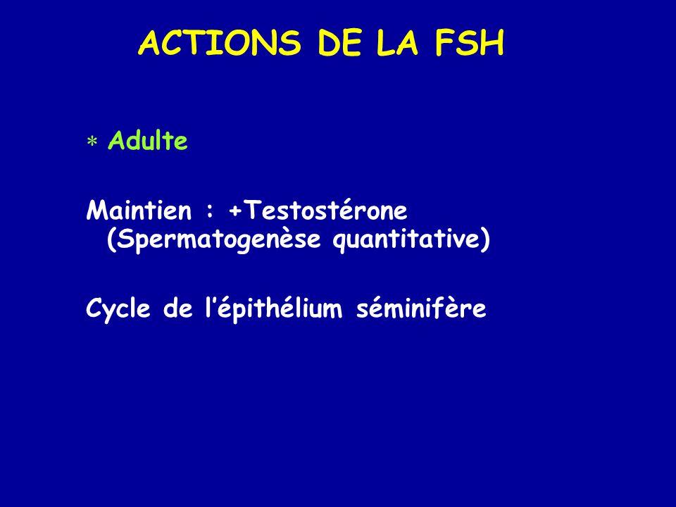 ACTIONS DE LA FSH Adulte