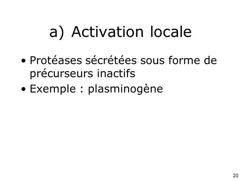Mardi 12 février 2008 Activation locale. Protéases sécrétées sous forme de précurseurs inactifs. Exemple : plasminogène.