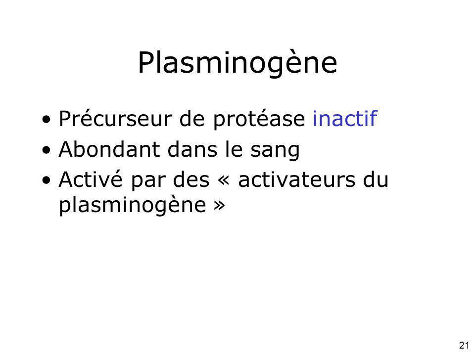 Plasminogène Précurseur de protéase inactif Abondant dans le sang