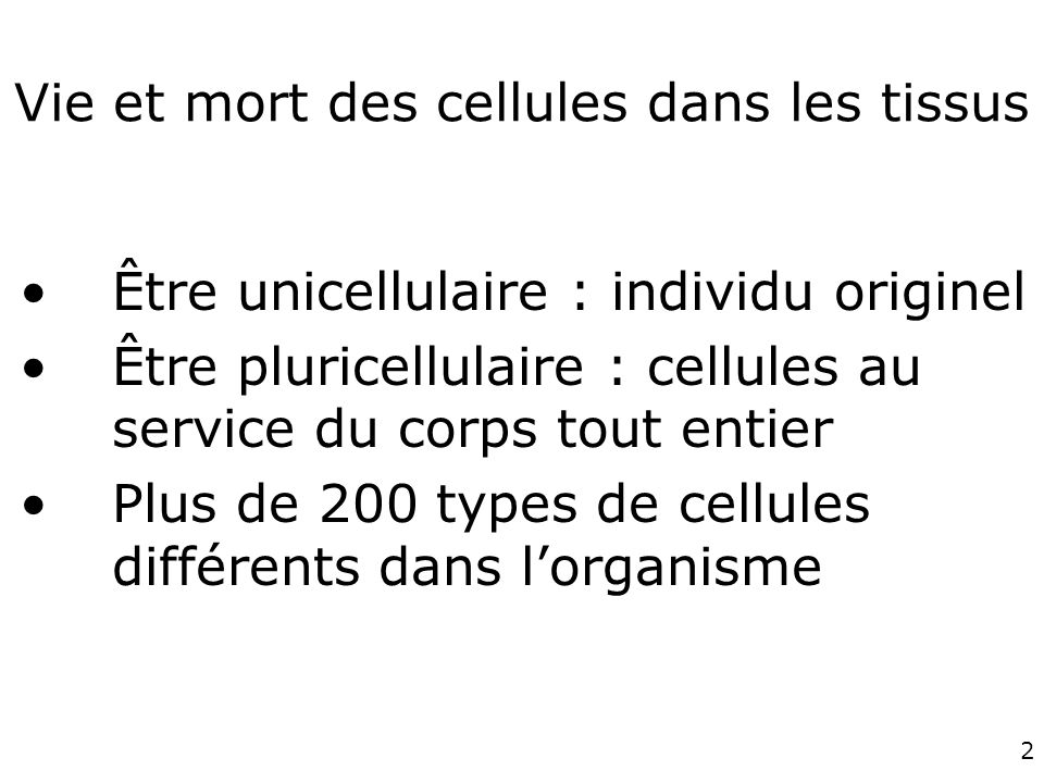 Vie et mort des cellules dans les tissus