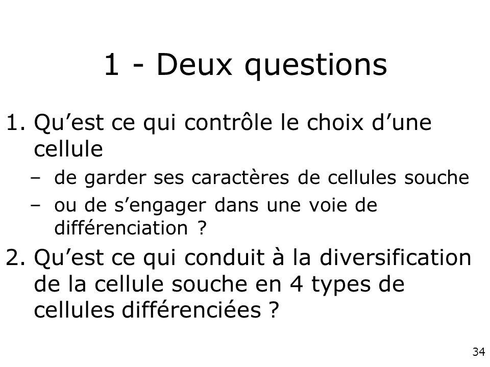 1 - Deux questions Qu'est ce qui contrôle le choix d'une cellule