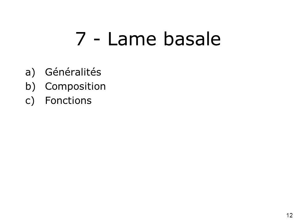 7 - Lame basale Généralités Composition Fonctions #18p1106