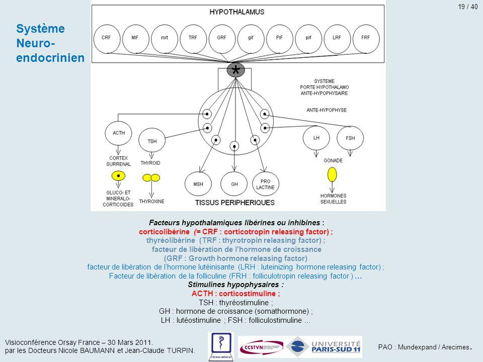 Système Neuro-endocrinien