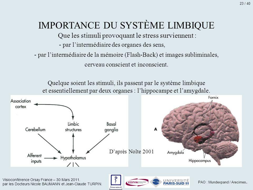 IMPORTANCE DU SYSTÈME LIMBIQUE