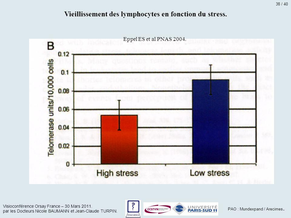 Vieillissement des lymphocytes en fonction du stress.