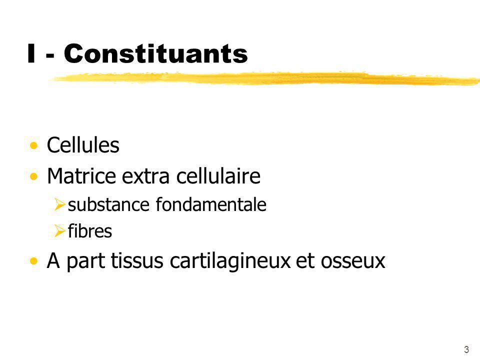 I - Constituants Cellules Matrice extra cellulaire