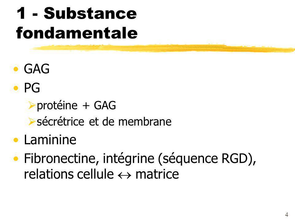 1 - Substance fondamentale