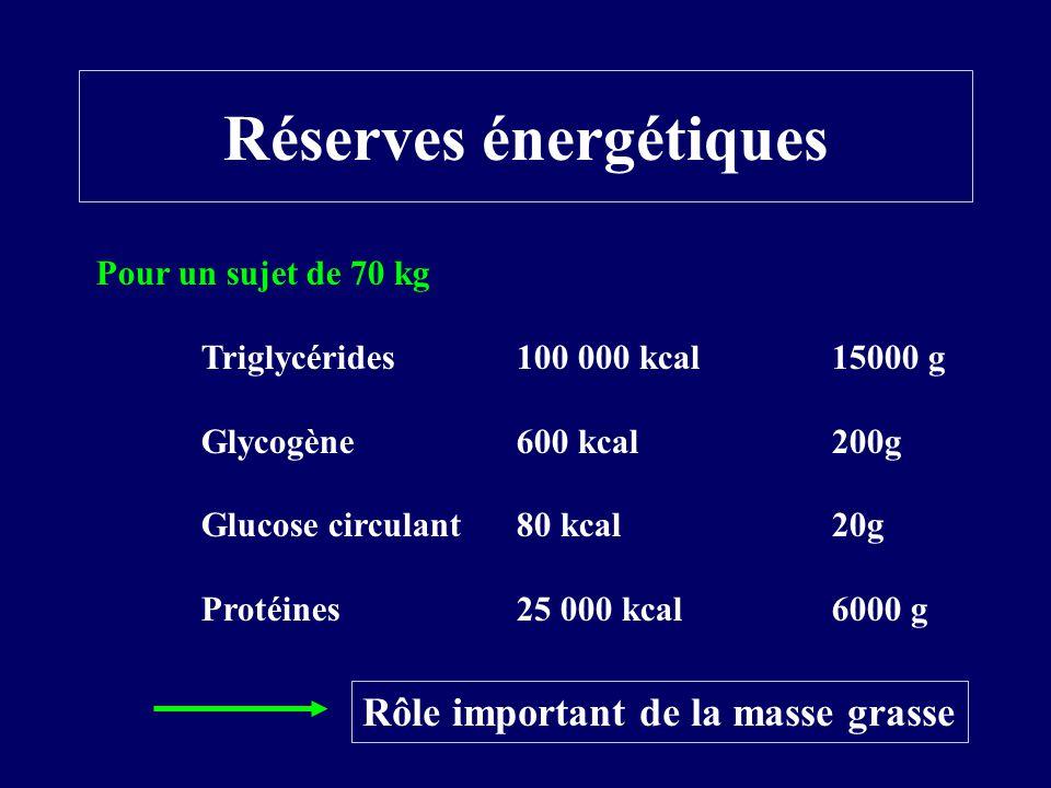 Réserves énergétiques