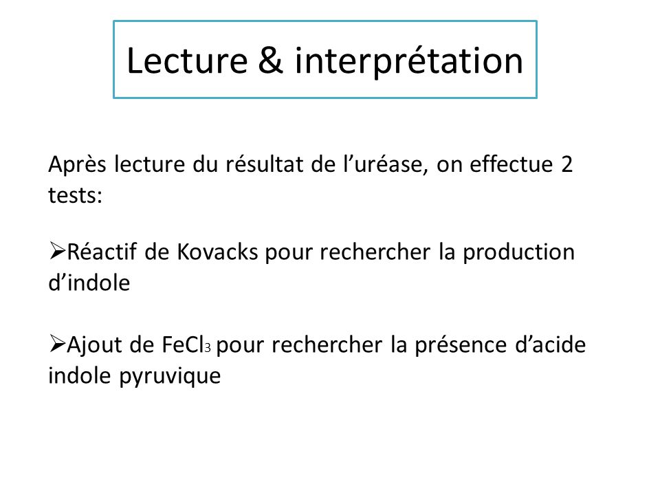 Lecture & interprétation