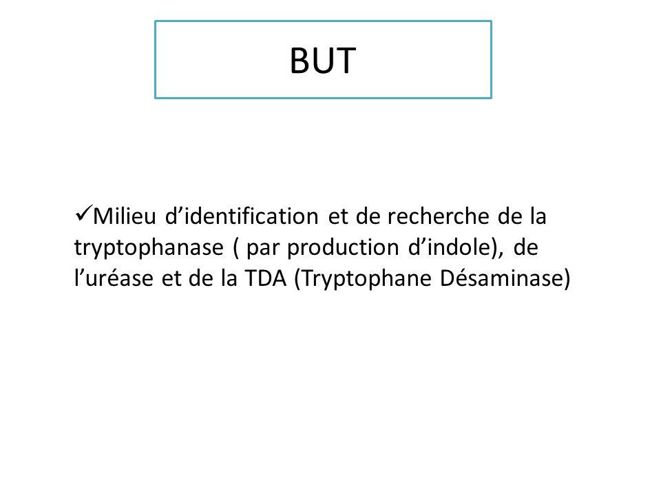 BUT Milieu d'identification et de recherche de la tryptophanase ( par production d'indole), de l'uréase et de la TDA (Tryptophane Désaminase)