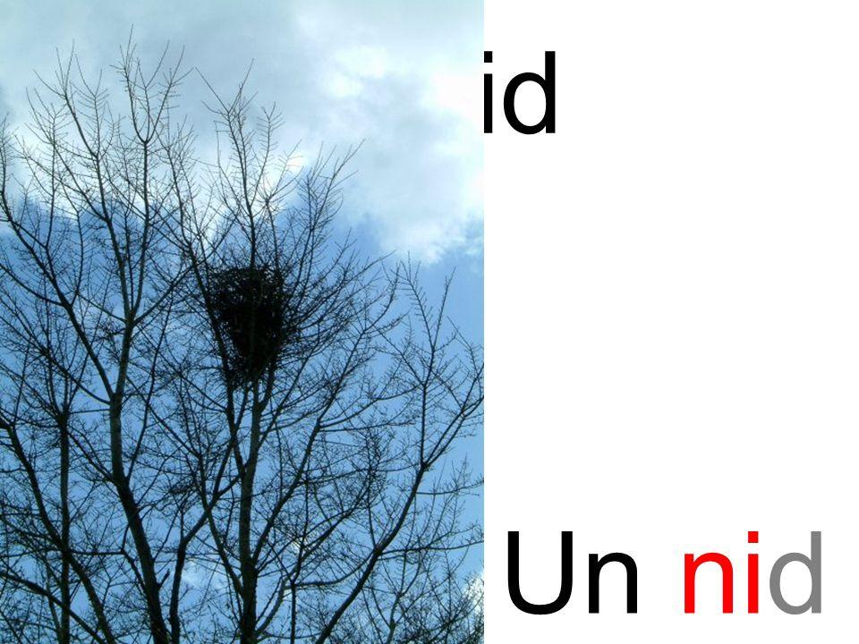 nid ni Un nid