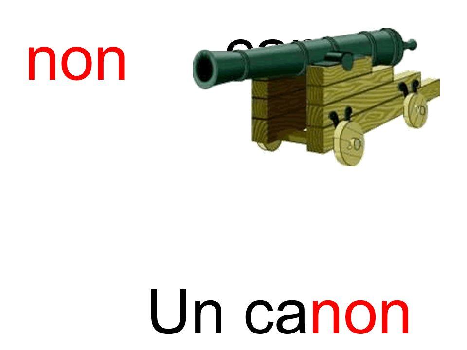 canon non Un canon