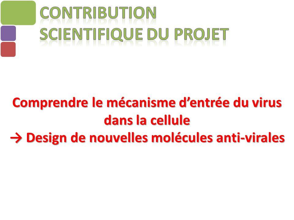Contribution scientifique du projet