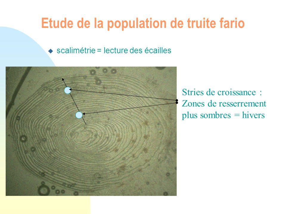 Etude de la population de truite fario