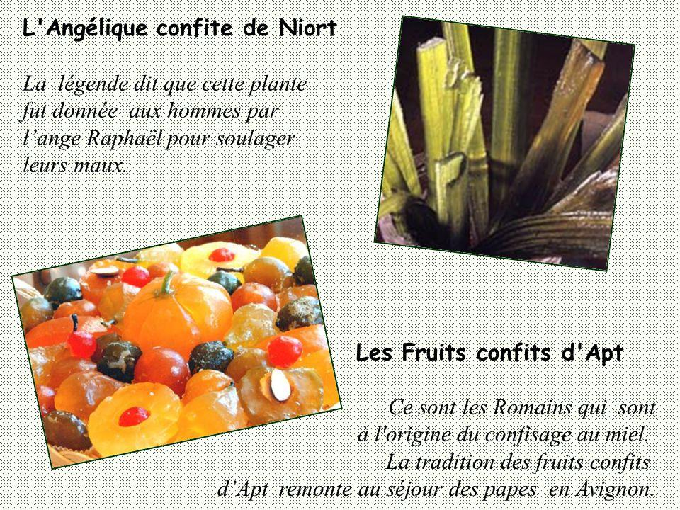 L Angélique confite de Niort