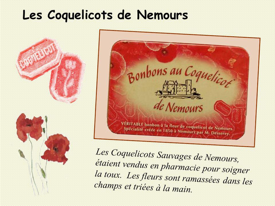 Les Coquelicots de Nemours