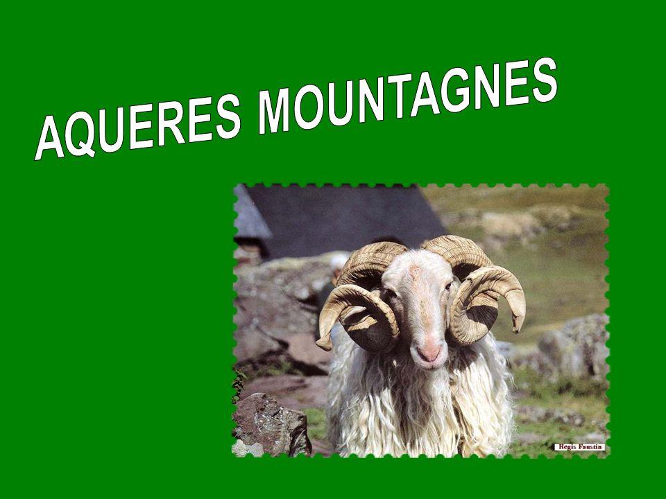 AQUERES MOUNTAGNES