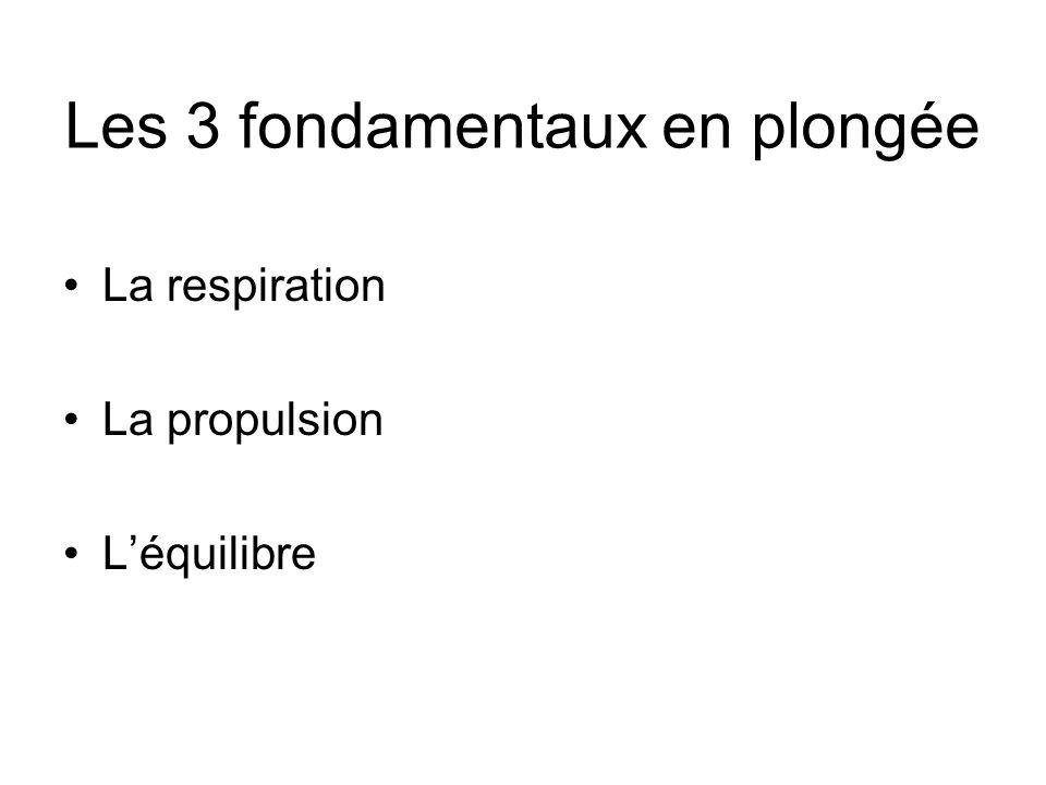 Les 3 fondamentaux en plongée