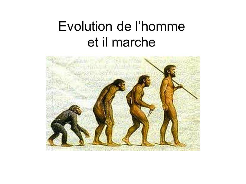 Evolution de l'homme et il marche