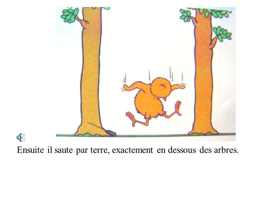 Ensuite il saute par terre, exactement en dessous des arbres.