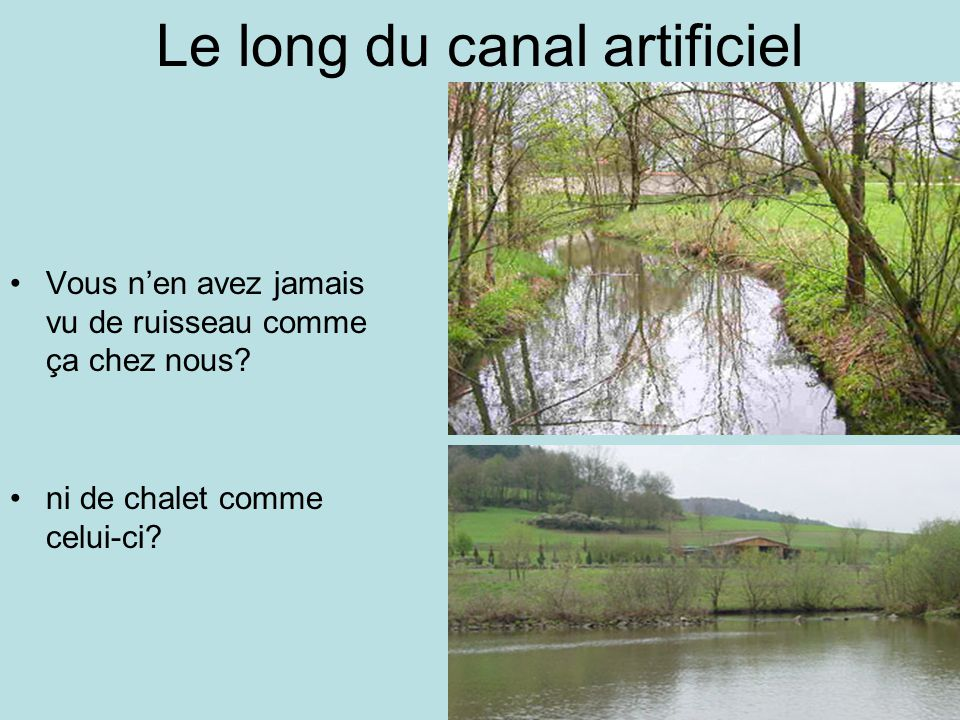 Le long du canal artificiel
