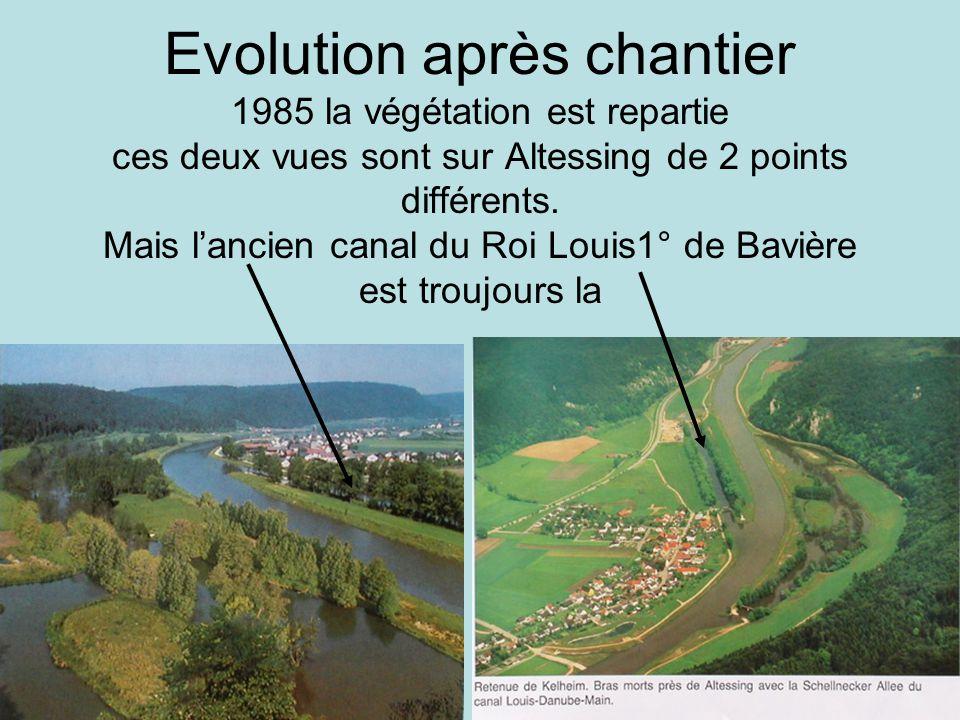 Evolution après chantier 1985 la végétation est repartie ces deux vues sont sur Altessing de 2 points différents.