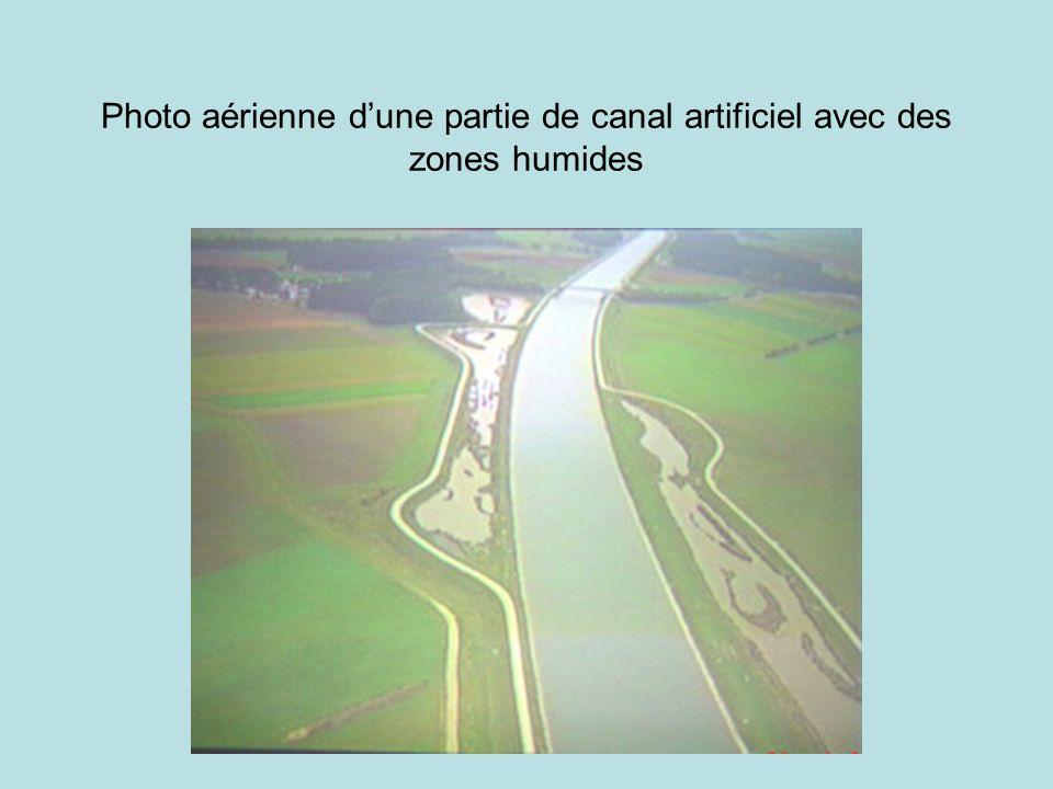 Photo aérienne d'une partie de canal artificiel avec des zones humides