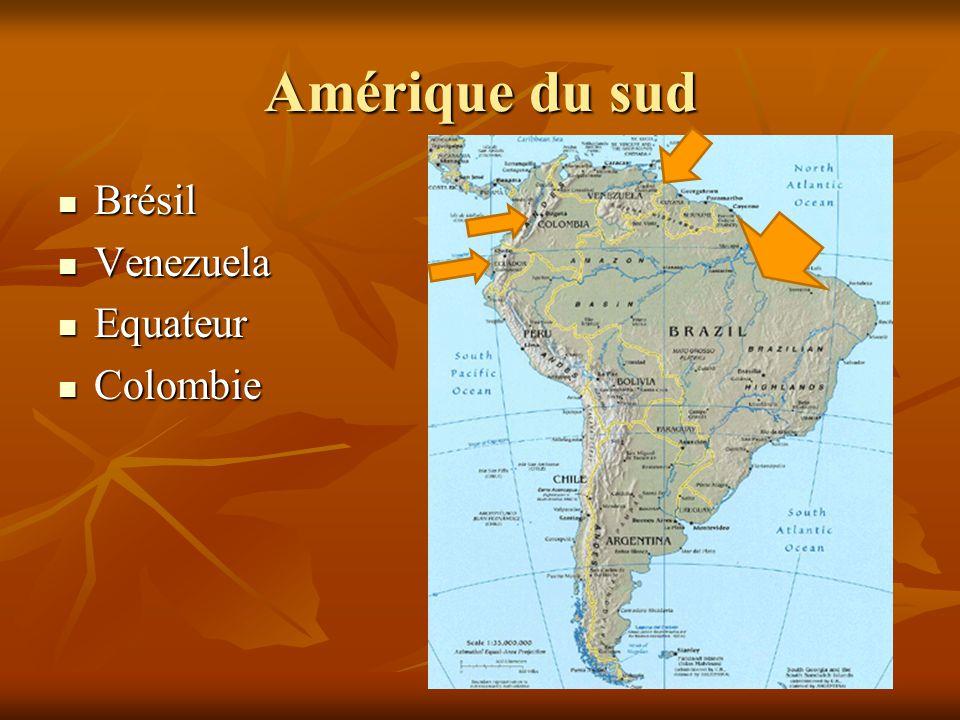 Amérique du sud Brésil Venezuela Equateur Colombie