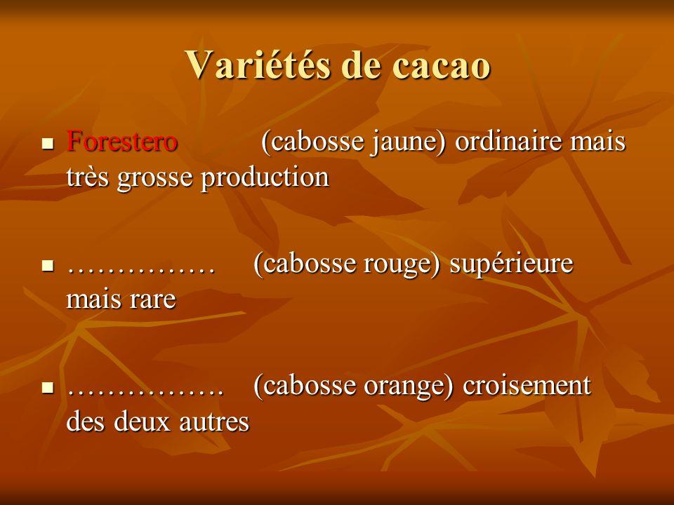 Variétés de cacao Forestero (cabosse jaune) ordinaire mais très grosse production. …………… (cabosse rouge) supérieure mais rare.