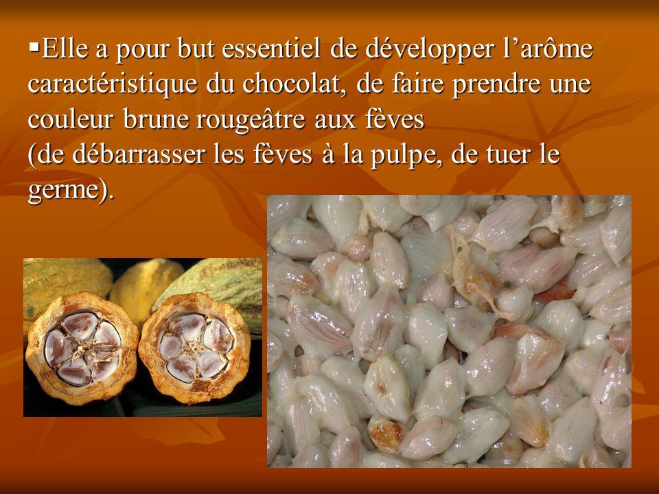 Elle a pour but essentiel de développer l'arôme caractéristique du chocolat, de faire prendre une couleur brune rougeâtre aux fèves