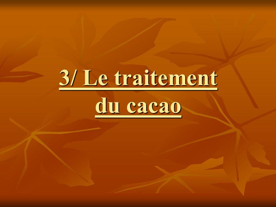 3/ Le traitement du cacao