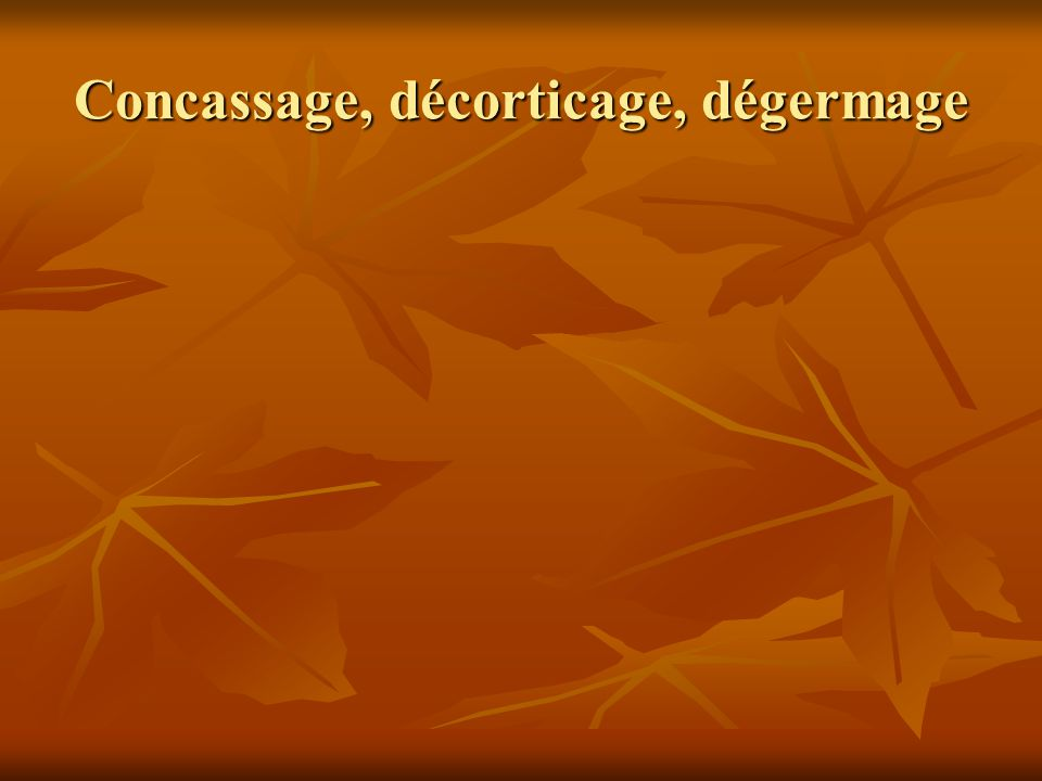 Concassage, décorticage, dégermage