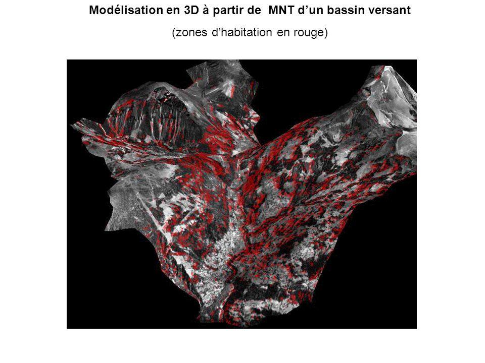 Modélisation en 3D à partir de MNT d'un bassin versant