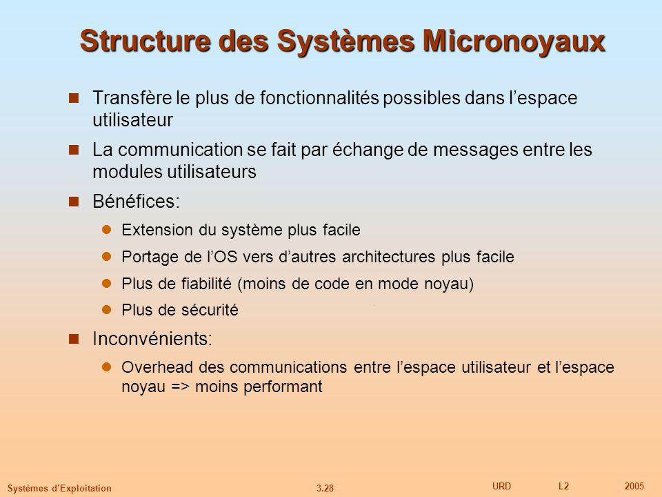 Structure des Systèmes Micronoyaux