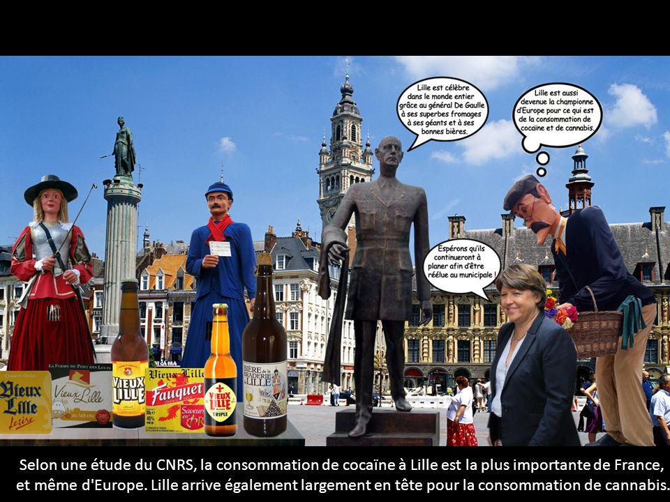 Selon une étude du CNRS, la consommation de cocaïne à Lille est la plus importante de France,