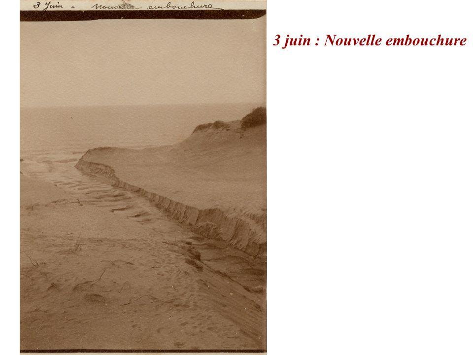 3 juin : Nouvelle embouchure