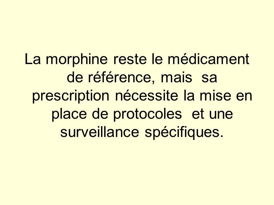 La morphine reste le médicament de référence, mais sa prescription nécessite la mise en place de protocoles et une surveillance spécifiques.