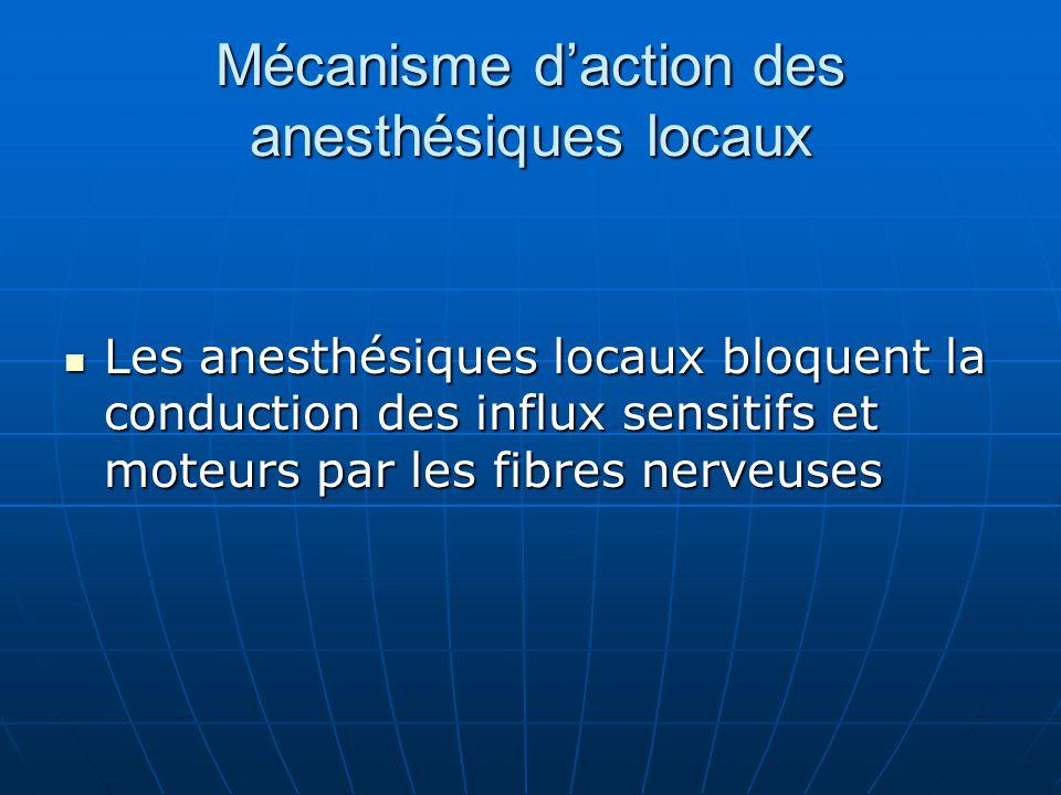 Mécanisme d'action des anesthésiques locaux