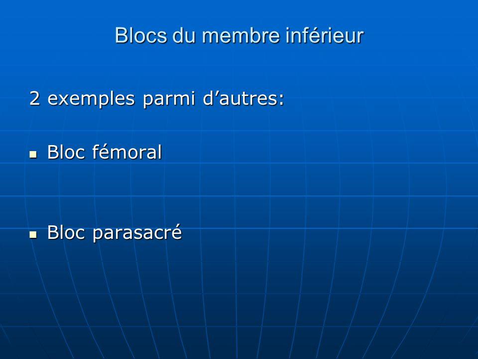 Blocs du membre inférieur