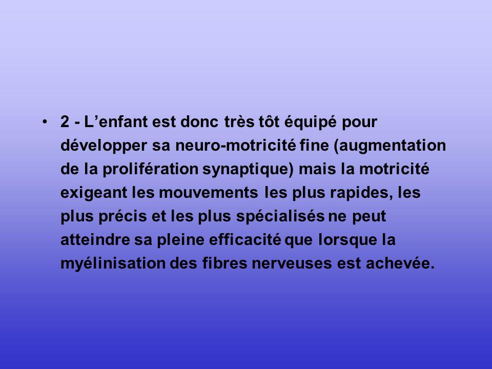 2 - L'enfant est donc très tôt équipé pour développer sa neuro-motricité fine (augmentation de la prolifération synaptique) mais la motricité exigeant les mouvements les plus rapides, les plus précis et les plus spécialisés ne peut atteindre sa pleine efficacité que lorsque la myélinisation des fibres nerveuses est achevée.