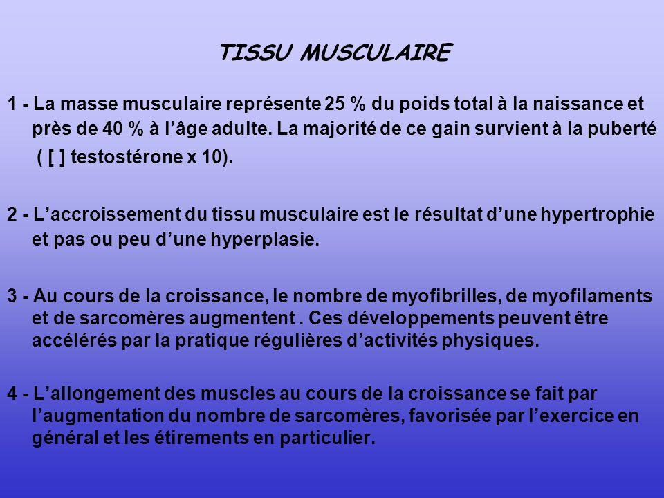 TISSU MUSCULAIRE