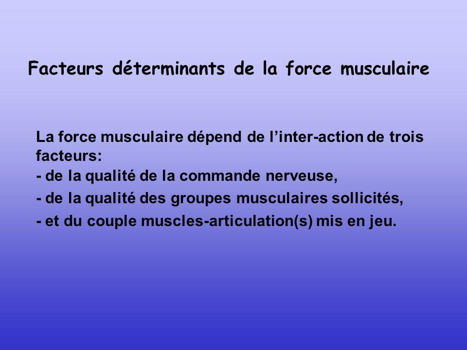 Facteurs déterminants de la force musculaire